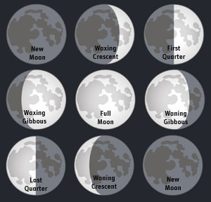 Fourth Quarter Moon Lunar Cycle and your diet